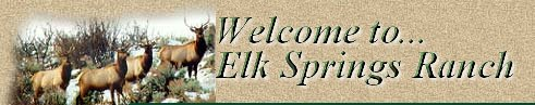 Welcome to Elk Springs Ranch!